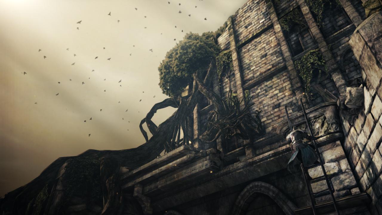 Dark Souls II lên kệ vào ngày 11/03/2014 - Ảnh 12