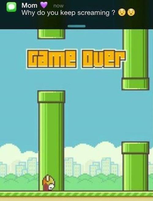 Năm lời khuyên giúp bạn đạt điểm cao với Flappy Bird 4